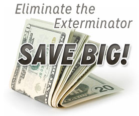Eliminate The Exterminator and Save Money